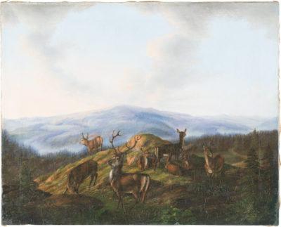 Hirsche am Waldhang vor weiter Hügellandschaft